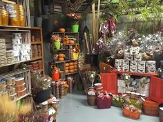 We are ready for autumn! #potomacfloralwholesale
