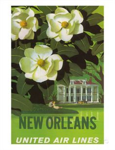 New Orleans, USA, Magnolia Blossoms, Louisiana State Flower, United Air Lines Kunstdruck
