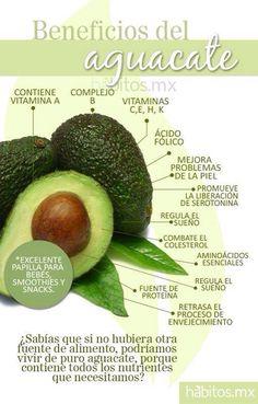 El aguacate #hábitosmx #salud #health #hábitos