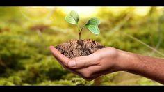 Teil 1 - Die 5 biologischen Naturgesetze Seminareinführung Apothecary, Medicine