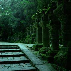 moss-covered pillars