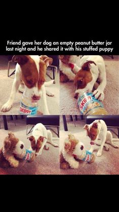 Cutest thing