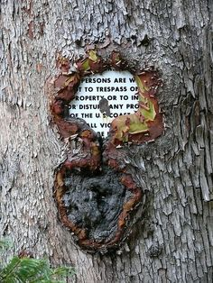 Sealed Warning