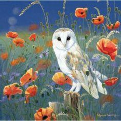 Barn Owl Blank Greeting Card Watching & Waiting by Pollyanna Pickering Owl Art, Bird Art, Illustrations, Illustration Art, Wildlife Art, Orange Flowers, Pet Birds, Decoupage, Pastel