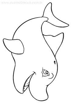 151 Mejores Imágenes De Proyecto Los Delfines Y Las Ballenas