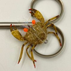 Saltwater Flies, Fly Tying, Fly Fishing, Claws, Latex, Shrimp, Tie, Business, Easy