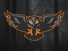 Owl designed by Aurélien Mahaut . Connect with them on Dribbble; the global community for designers and creative professionals. Logo Esport, Owl Logo, Gfx Design, Logo Design, Mascot Design, Graphic Design, Buho Logo, Gaming Logo, Sheep Logo