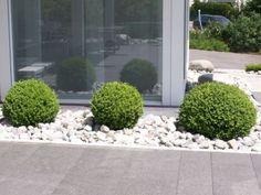 feng shui garten runde formen buchsbaum | gartengestaltung, Garten und bauen