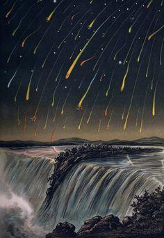 Panspermia - Leonid Meteor Storm