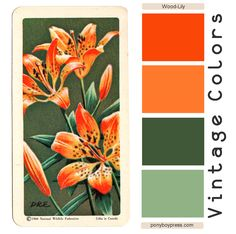Google Image Result for http://3.bp.blogspot.com/-uLjr_QM6yEs/T5HRvt39xBI/AAAAAAAABQc/NWebgGipU-M/s1600/vintagecolors-wood-lily.png