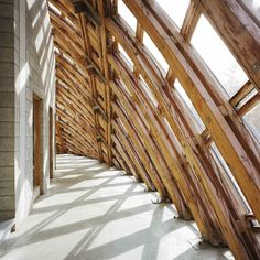 Walloon Branch of Reproduction Forestry Material / SAMYN and PARTNERS