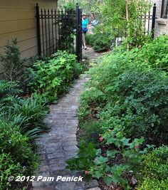 This side garden shows what you can do with a narrow, shady space: curve your path in an arc (don't give in to squiggles), plant a mix of evergreens and shade-tolerant flowering plants with a narrow profile, and open up the space to views and breezes with a see-through, wrought-iron fence or gate.