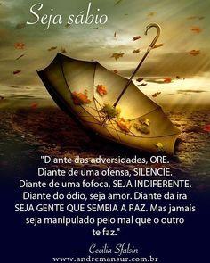 """""""Diante das adversidades, ore. Diante de uma ofensa, silencie. Diante de uma fofoca, seja indiferent - viver.de.amor"""