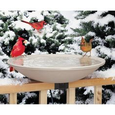 """Allied Precision Industries 20"""" Heated Deck Rail Bird Bath with Quick Release"""