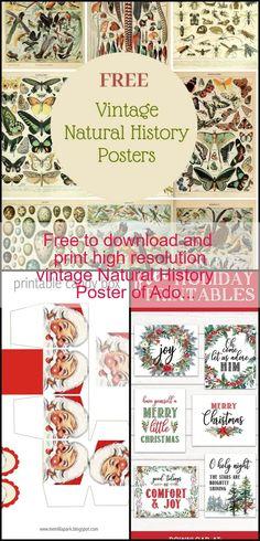 Diy Crafts Vintage, History Posters, Natural History, Merry, Check, Nature, Free, Naturaleza, Scenery