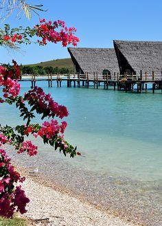 Kuendu Beach Resort, Nouméa, New Caledonia. I would love to go here one day because it is where my grandma was from.