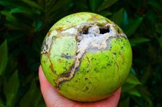Extra Large Bright Lime Green Opal Sphere with Crystalline Natural Vugs from Madagascar, Polished Green Opal Ball, Gemstone, Reiki Healing, Geode