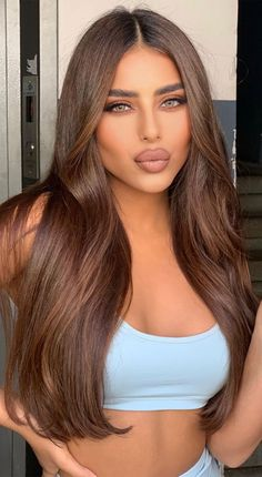 Brown Hair Inspo, Hair Color For Brown Skin, Warm Brown Hair, Brown Hair Shades, Light Brown Hair, Light Hair, Honey Coloured Hair, Lighter Brown Hair Color, Hair Color Ideas For Dark Hair