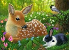 Fawn deer bunny rabbit chickadee wildlife forest OE aceo print of painting Deer Drawing, Bunny Drawing, Animal Paintings, Animal Drawings, Cute Drawings, Les Moomins, Forest And Wildlife, Scratchboard Art, Deer Art