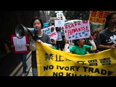 Young activists took to the streets in Hong Kong earlier this month in a peaceful, student-led protest of several ivory retailers — none of whom were display.
