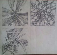 Natural form designs