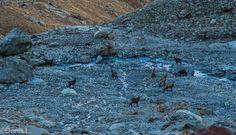 vers la descente sur le lac bleu Wallis, City Photo, Photos, Cabin, Blue, Pictures, Photographs