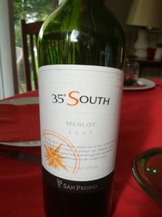 35°South - Merlot / 2007 / San Pedro - Chile