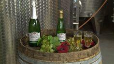Belgian Winemaker Creates White Wine That Tastes Like Beer - http://www.odditycentral.com/foods/belgian-winemaker-creates-white-wine-that-tastes-like-beer.html
