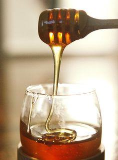 honey by tres.jolie, via Flickr