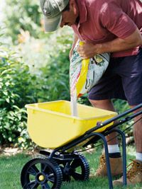 Garden Tips - Lawn Care 101 Now is the time to start looking after the lawn so this summer is beautiful. That's why I'm going to start explaining how to start keeping it. Lawn And Garden, Garden Tools, Home And Garden, Lawn Care Business Cards, Lawn Care Tips, Pergola Pictures, Lawn Sprinklers, Lawn Maintenance, Yard Care