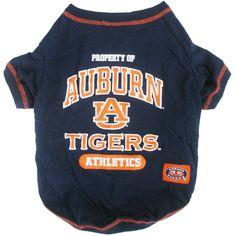 b3e047ad169 48 Best Auburn Tigers images | Auburn tigers, Auburn university, Dog ...