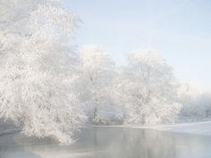 winter, invierno