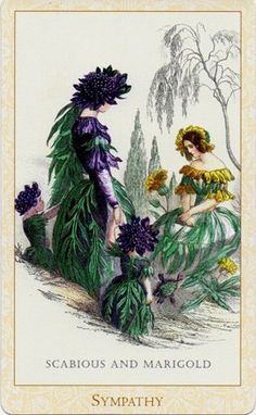 The Scabious and Marygold fairies. Scabious in English is Pincushion flower, the Black Scabious also known as Mourning Bride - hence the card 'Sympathy'. The widow is holding her two children. By J. J. Grandville.