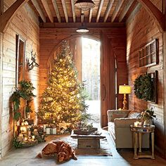 Deck the Paws | Go for the Gold: A golden retriever basks in the glow of a shimmering Fraser fir tree that emanates an aura of hope and exudes holiday joy.