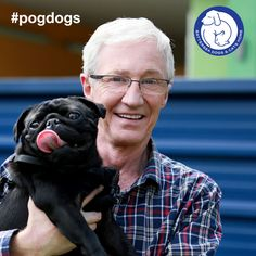 The wait is over – #pogdogs is back next Thursday at 8.30pm on ITV!  Paul O'Grady returns to Battersea in this brand new eight-part series to meet more of our four legged friends who are looking for help, love and new homes.  Are you excited? If you're going to be watching, repin this post.