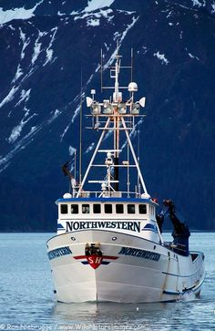The F/V Northwestern arriving in Seward, Alaska. This is one of the crab boats from the Discovery Channel's show Deadliest Catch. I want to do one day of crab fishing :) maybe an hour Kayak Fishing, Fishing Boats, Fishing Games, Fishing Reels, Sit On Kayak, North To Alaska, Discovery Channel Shows, Deadliest Catch, Sports Nautiques