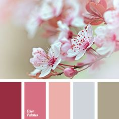 Color Palette #3332