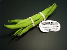 Plantable Produce Packaging - Vegetable Labels by Ben Huttly Break Down Then Burgeon (GALLERY)