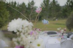 Decoração - Decoration Casamento Bel e Ju Plants, Valentines Day Weddings, Pictures, Plant, Planets