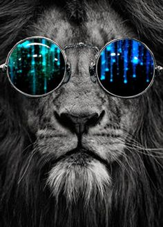 (Top Best Trippy Background & Psychedelic Wallpaper For Desktop, Mobile Animals And Pets, Cute Animals, Lion Art, Photocollage, Belle Photo, Big Cats, Diy Painting, Cool Artwork, Cool Stuff