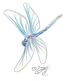 Dragonfly Tattoo Designs | The Body is a Canvas