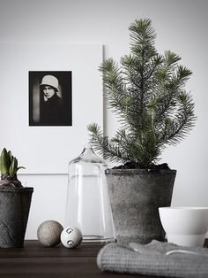 my scandinavian home: 5 beautifully, Minimalist Christmas Trees (Photo - Pella Hereby)