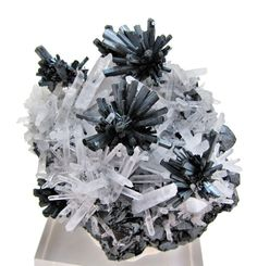 Stibnite, quartz, sphalerite  Locality: Alimon Mine (Animon Mine), Huaron mining district, Huayllay District, Pasco Province, Pasco Department, Peru  Dimensions: 67 mm x 62 mm  Description: Bursts of well-terminated stibnite crystals with quartz, covering a well crystallized sphalerite matrix. Captured with a camera Canon G10 with 14.7MP and processed with Paint Shop Pro Photo X6