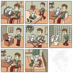 el gato, se sube, quiere que le haga caso, no lo deja