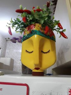 DIY Face Shaped Painted Plastic Bottle Planters - Balcony Decoration Ideas in Every Unique Detail Plastic Bottle Planter, Reuse Plastic Bottles, Plastic Bottle Crafts, Diy Bottle, Recycled Crafts, Diy Crafts, Painted Flower Pots, Bottle Painting, Origami