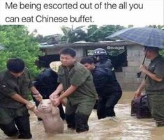 32 Funny Pictures Of The Day