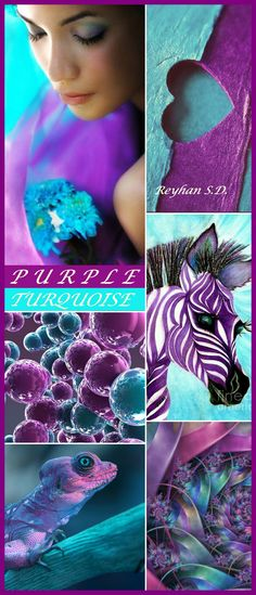 '' Purple & Turquoise '' by Reyhan S.D.