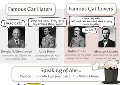 Do you like cats? Here are some famous people that did (and didn't)  #cats