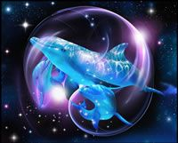 Dolphin Swirl  ~Lassen~