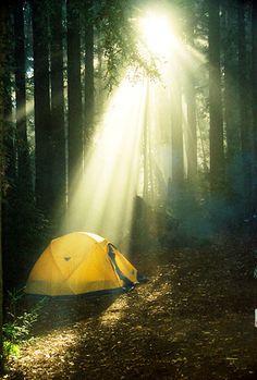 ...why we camp.